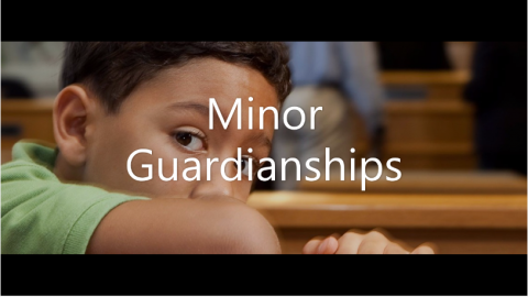 minor-guardianships